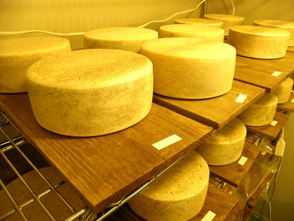 チーズ工房那須の森